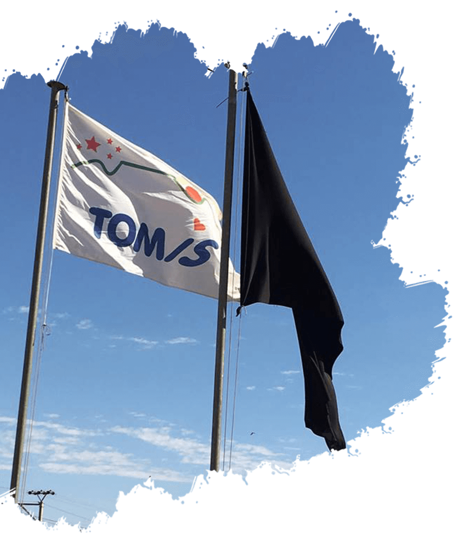 Tomis company vision