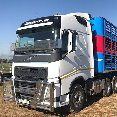 Tomis import of livestock